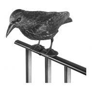 Kruk siedzący - skuteczny odstraszacz ptaków