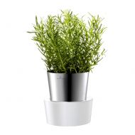 Doniczka na zioła Auerhahn Herbs