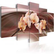 Obraz - Kwiaty orchidei na falującym tle (100x50 cm)
