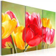 Obraz - Znów zakwitły tulipany... (60x40 cm)