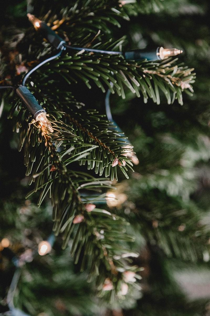 Lampki świąteczne - oświetlenie choinki
