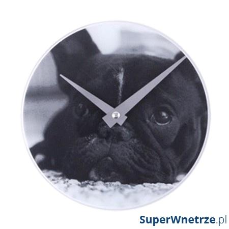 Zegar ścienny NEXTIME Dog B2001140